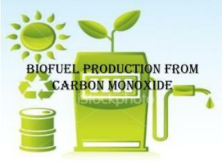 Biofuel Production from Carbon monoxide