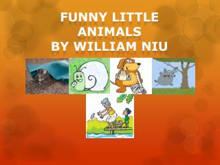 Funny Little Animals by  william niu