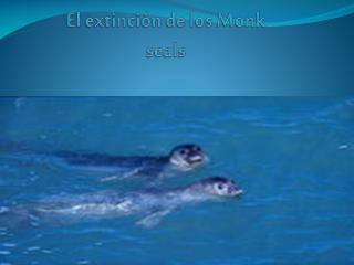 El extinción de los  Monk seals