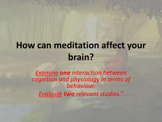How can meditation affect your brain?