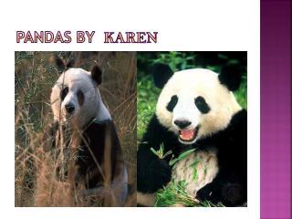 PANDAs BY   KAREN