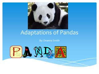 Adaptations of Pandas