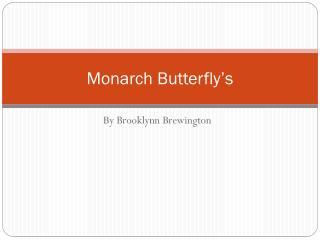 Monarch Butterfly�s