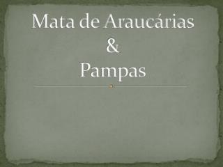 Mata de Araucárias      & Pampas