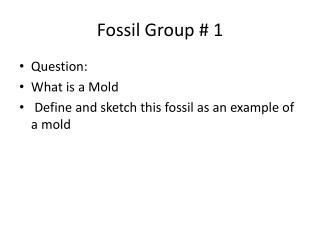 Fossil Group # 1