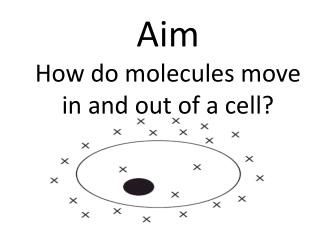 Aim How do molecules move in and out of a cell?