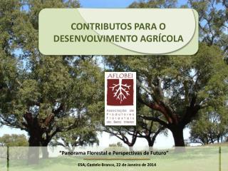 CONTRIBUTOS PARA O DESENVOLVIMENTO AGRÍCOLA