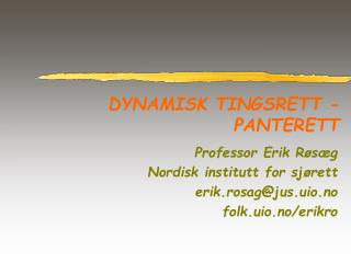 DYNAMISK TINGSRETT - PANTERETT