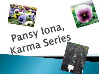 Pansy Iona, Karma Series