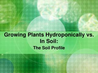 Growing Plants Hydroponically vs. In Soil: