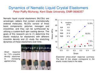 Dynamics of  Nematic  Liquid Crystal  Elastomers