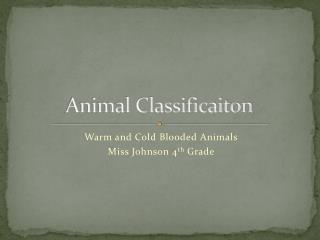 Animal Classificaiton