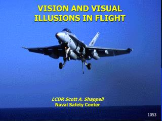 VISION AND VISUAL ILLUSIONS IN FLIGHT