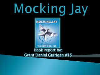 Mockin g Jay