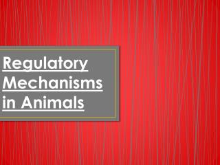Regulatory Mechanisms in Animals
