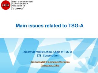Main issues related to TSG-A