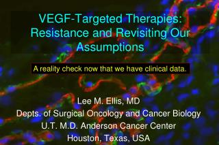 VEGF -Targeted  Therapies:  Resistance and Revisiting Our Assumptions