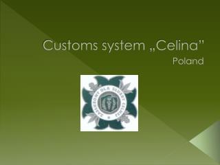 """Customs  system """"Celina"""""""