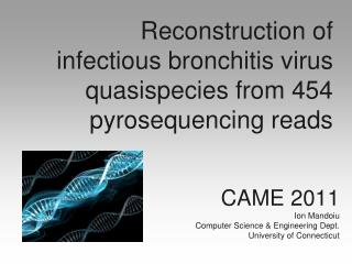 Reconstruction of infectious bronchitis virus  quasispecies  from 454  pyrosequencing  reads