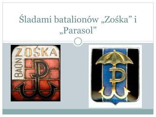 """Śladami batalionów  """"Zośka"""" i """"Parasol"""""""
