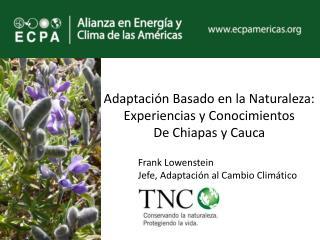 Adaptación Basado en la Naturaleza: Experiencias y Conocimientos  De Chiapas y Cauca