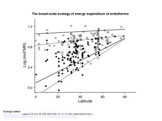 The broad‐scale ecology of energy expenditure of endotherms