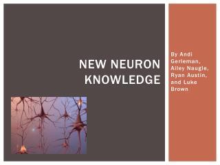 New Neuron Knowledge