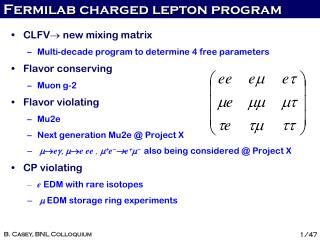 Fermilab  charged lepton program