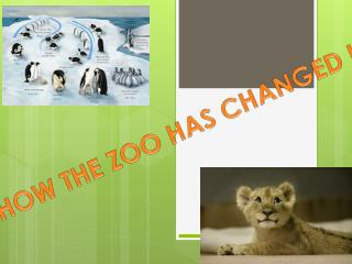 HOW THE ZOO HAS CHANGED !