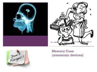 Memory Cues (mnemonic devices)