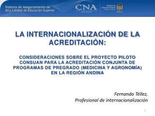 Fernando  Téllez,  Profesional de  internacionalización