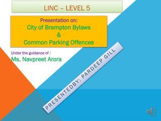 Linc  – level 5