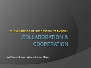 Collaboration & Cooperation