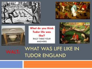 What was life like in Tudor England