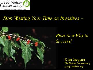 Stop Wasting Your Time on Invasives