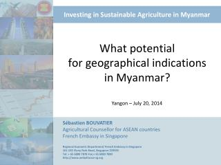 What  potential for  geographical  indications in  Myanmar ?