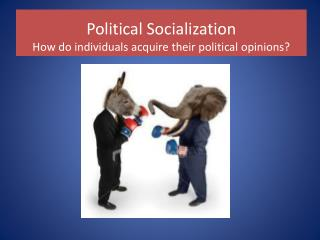 Political Socialization How do individuals acquire their political opinions?