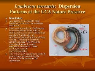 Lumbricus terrestris:  Dispersion Patterns at the UCA Nature Preserve