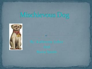 Mischievous Dog