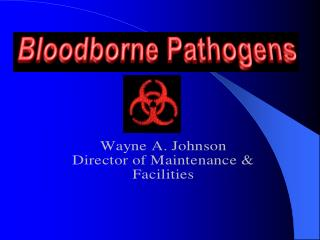 What Are Bloodborne Pathogens?