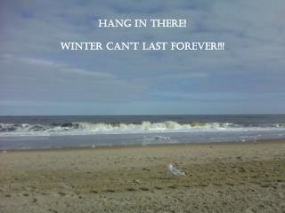 Hang In There! Winter Can�t Last Forever!!!
