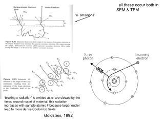 Goldstein, 1992