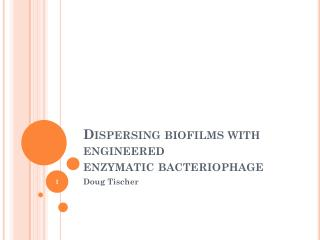 Dispersing biofilms with engineered enzymatic bacteriophage