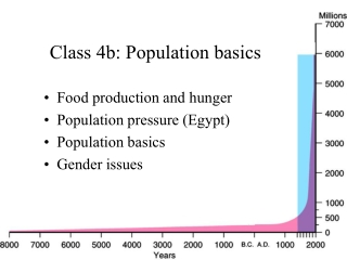 Gender aspects of  displacement