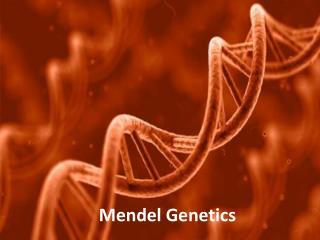 Mendel Genetics
