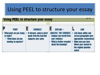 Using PEEL to structure your essay