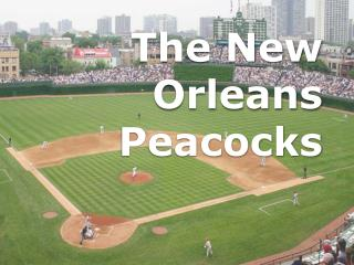 The New Orleans Peacocks
