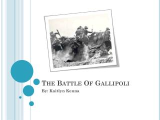 The Battle Of Gallipoli