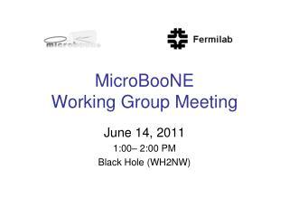 MicroBooNE  Working Group Meeting