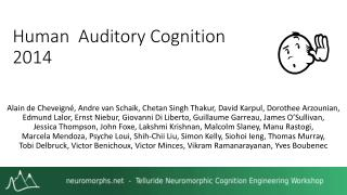 Human  Auditory Cognition 2014